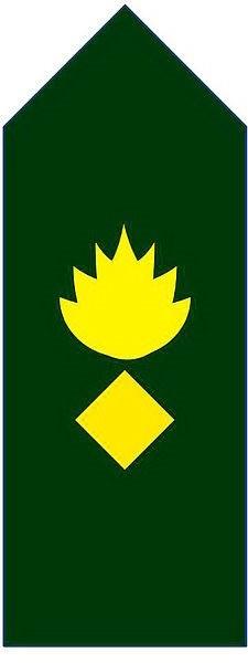 Rank Categories Bangladesh Army